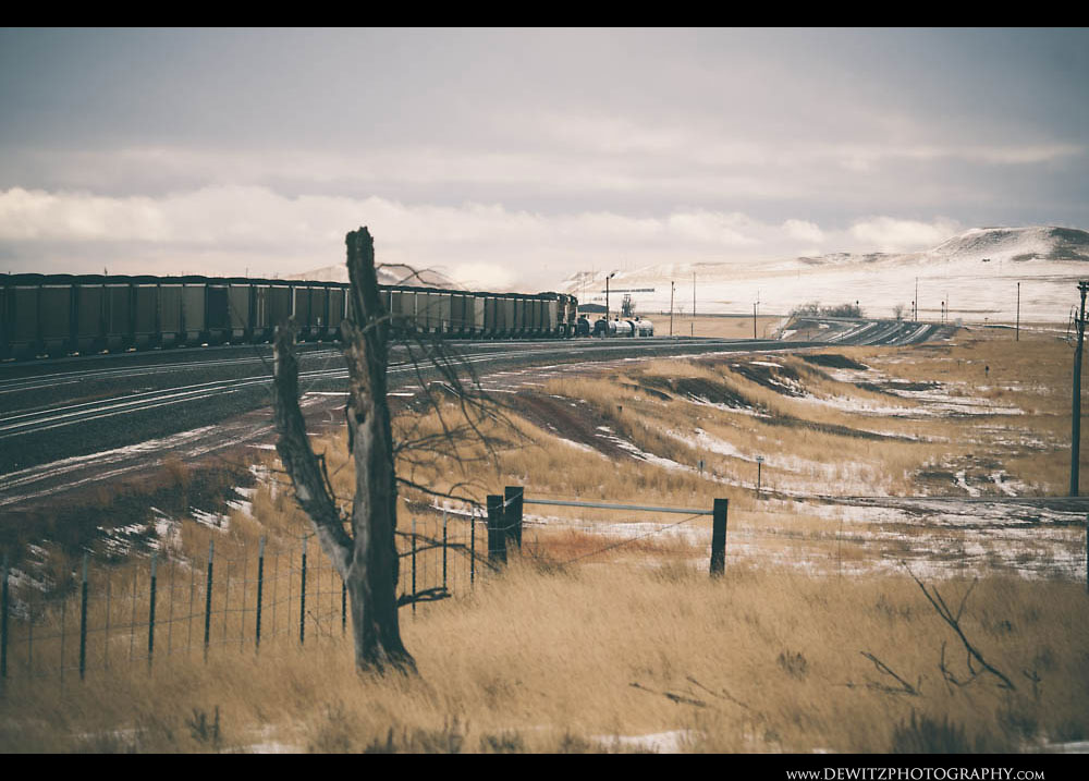 219An Old Homestead Borders the PRB Mainline