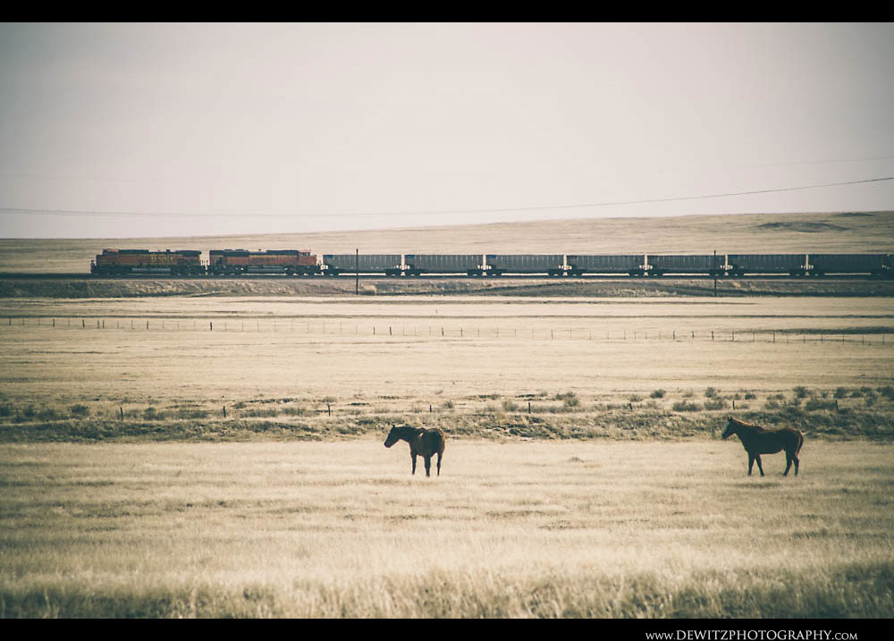 169Wyoming Ranch Land BNSF Train and Horses