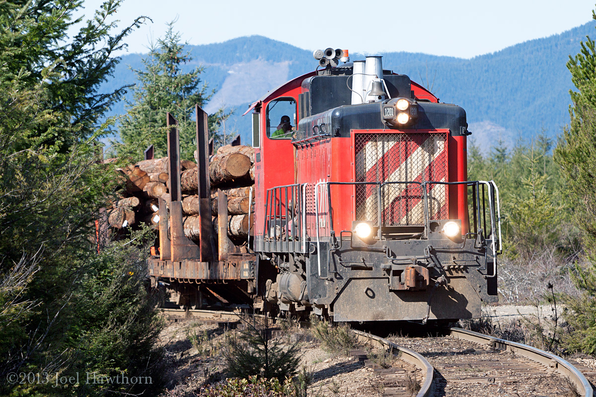 Log train heading back down hill from Mill 5 at mile post 8.